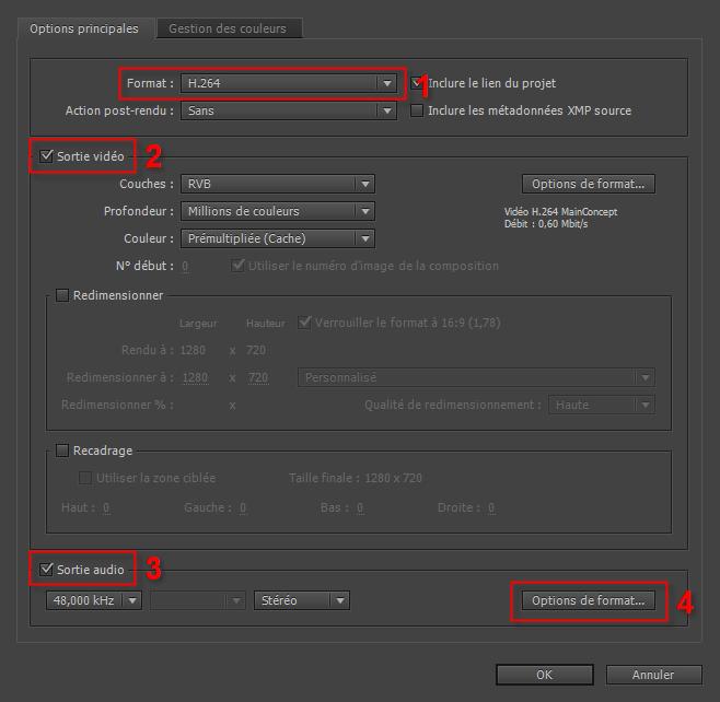 Exporter une vidéo en H 264 dans After Effects